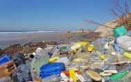 Premiers tris de déchets pour réhabiliter une ancienne décharge du Havre
