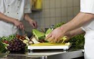 Cantines scolaires : un guide pour l'expérimentation du menu végétarien