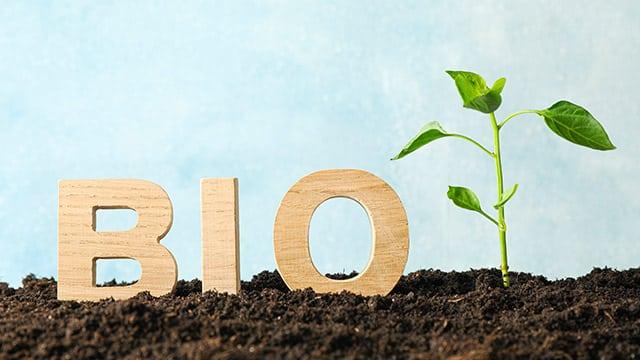 Plan de Relance : 5 millions d'euros supplémentaires pour développer la filière bio