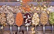 Menus végétariens à l'école : des recettes pour aider les cuisiniers