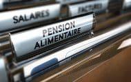 Un quart des parents séparés ne paye aucune pension alimentaire