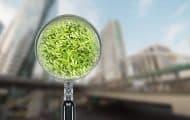 L'évaluation environnementale systématique des PLU : une « simplification » bienvenue
