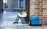 Harcèlement scolaire : le gouvernement veut des adultes référents dans chaque collège et lycée