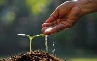 Sécheresses et ressource en eau : un nouveau décret d'encadrement