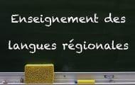 Langues régionales : un rapport remis à Jean Castex pour sécuriser l'apprentissage immersif