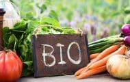 La métropole de Lyon investit 10 millions d'euros pour une agriculture bio et locale