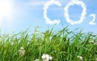 Un label bas-carbone pour dynamiser la lutte contre le changement climatique