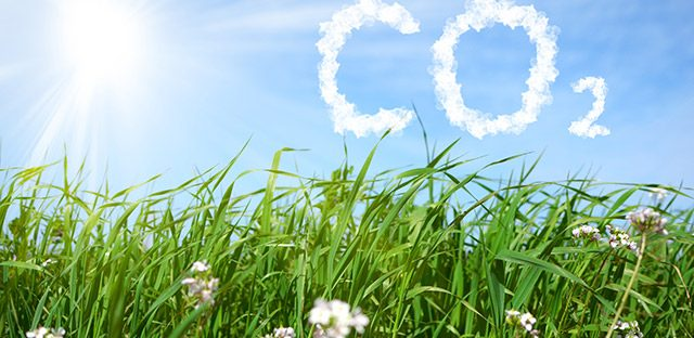 Hydrogène décarboné : il faut aller plus vite pour baisser les coûts, dit l'AIE