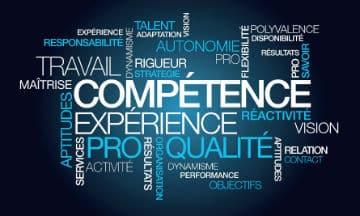 Un panorama de la gestion des emplois et des compétences des agents territoriaux
