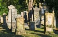Gestion-des-cimetieres-et-pratiques-funeraires-retour-sur-le-colloque-annuel-du-Sifurep