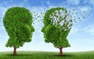 Les-laureats-de-l-edition-2014-des-Prix-de-la-Fondation-Mederic-Alzheimer