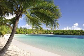 Affectation-en-Nouvelle-Caledonie-et-a-Wallis-et-Futuna