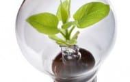 Commande-publique-et-developpement-durable
