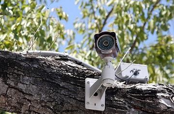 Polices-municipales-et-agents-communaux-de-videosurveillance-sous-l-aeil-de-la-Cour-des-comptes_reference